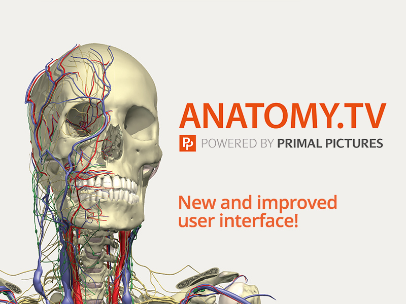 New trial e-database: Anatomy.TV: Anatomy & Physiology (upgrade version)
